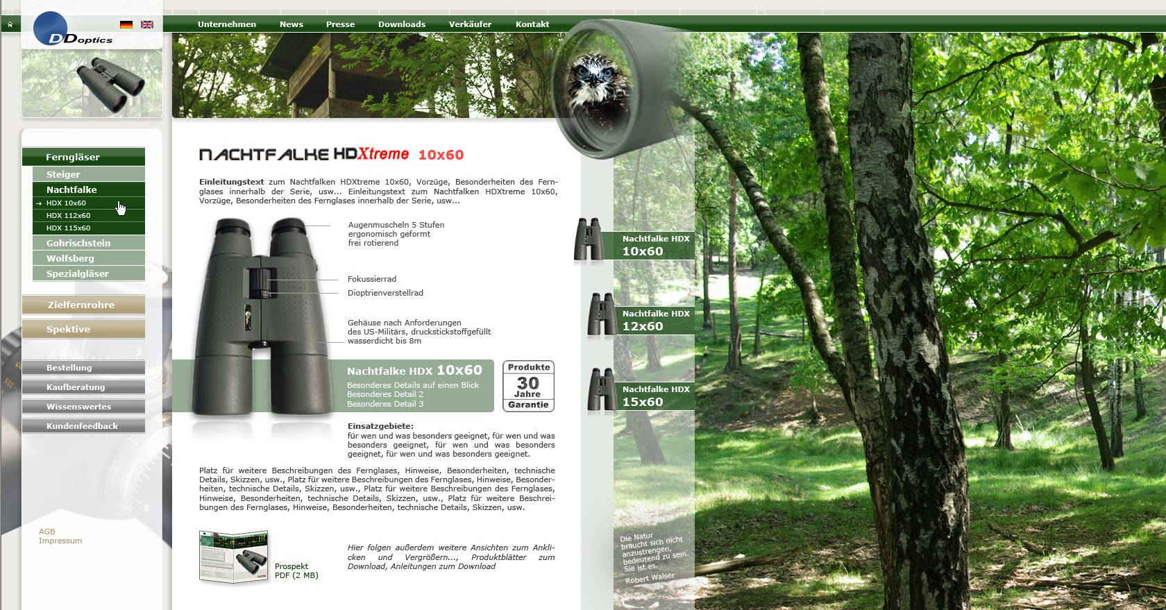 Webdesign - DDoptics Germany